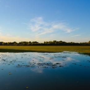 Párbeszéd a Tisza-tó fejlesztéséért