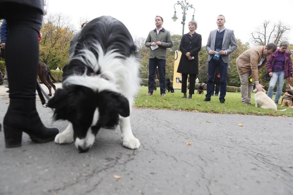 Kutyabarát Város Programot indított Eger
